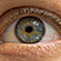 Read more about: Eyetracking data can improve language technology and help readers